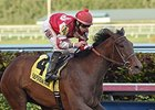 Birdatthewire Soars to Easy Forward Gal Win