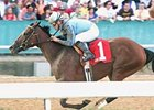 Azeri winner Acoma tries for a grade I win in the Apple Blossom.