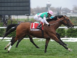 Starformer wins the 2012 Long Island Handicap.