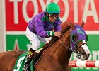 California Chrome Records Last Work for Dubai