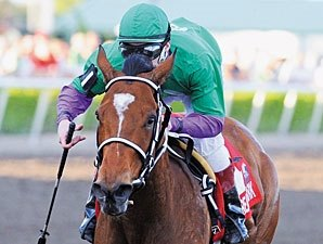 Daily Oaks Notes: April 22