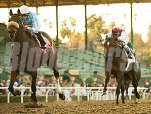 Life is Sweet wins the 2009 El Encino