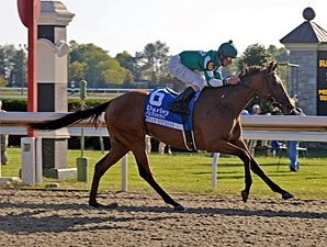 Dream Empress Could Shine at BC