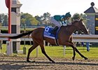 "Alcibiades winner Dream Empress is a strong contender for the Breeders' Cup Juvenile Fillies.<br><a target=""blank"" href=""http://www.bloodhorse.com/horse-racing/photo-store?ref=http%3A%2F%2Fpictopia.com%2Fperl%2Fgal%3Fprovider_id%3D368%26ptp_photo_id%3D6170092%26ref%3Dstory"">Order This Photo</a>"