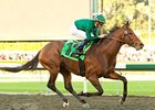"Gio Ponti under Garrett Gomez pulls away in the Sir Beaufort Stakes.<br><a target=""blank"" href=""http://www.bloodhorse.com/horse-racing/photo-store?ref=http%3A%2F%2Fpictopia.com%2Fperl%2Fgal%3Fprovider_id%3D368%26ptp_photo_id%3D7226458%26ref%3Dstory"">Order This Photo</a>"
