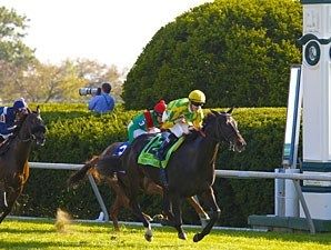 Never Retreat wins the 2011 First Lady.