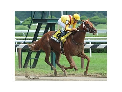 "Kantharos<br><a target=""blank"" href=""http://www.bloodhorse.com/horse-racing/photo-store?ref=http%3A%2F%2Fpictopia.com%2Fperl%2Fgal%3Fprovider_id%3D368%26ptp_photo_id%3D9148927%26ref%3Dstory"">Order This Photo</a>"