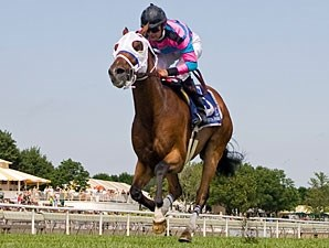 Chamberlain Bridge wins the 2010 Arlington Sprint.