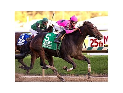 Regal Solo storms home in the Maryland Million Classic.