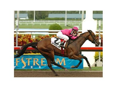 "Hey Byrn takes the Holy Bull under Chuck Lopez.<br><a target=""blank"" href=""http://www.bloodhorse.com/horse-racing/photo-store?ref=http%3A%2F%2Fpictopia.com%2Fperl%2Fgal%3Fprovider_id%3D368%26ptp_photo_id%3D4155907%26ref%3Dstory"">Order This Photo</a>"
