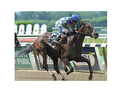 "Emma's Encore will carry 123 pounds in the Hurricane Bertie Stakes.<br><a target=""blank"" href=""http://photos.bloodhorse.com/AtTheRaces-1/at-the-races-2012/22274956_jFd5jM#!i=1951073740&k=9qFfVzG"">Order This Photo</a>"