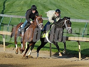 Revolutionary works at Churchill Downs 4/12/2013.