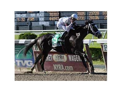 "Looky Yonder upset the heavily favored Dream Rush in the Vagrancy (gr. II) May 25 at Belmont. <br><a target=""blank"" href=""http://www.bloodhorse.com/horse-racing/photo-store?ref=http%3A%2F%2Fpictopia.com%2Fperl%2Fgal%3Fprovider_id%3D368%26ptp_photo_id%3D4641730%26ref%3Dstory"">Order This Photo</a>"