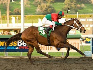 Jeranimo wins the 2010 Strub.