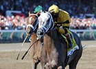 Cross Traffic