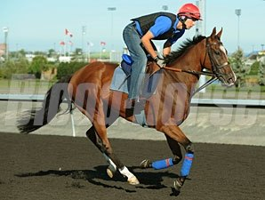 Dance And Dance at Woodbine, 09/14/11