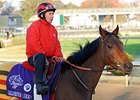 Head: Goldikova Better Than Ever