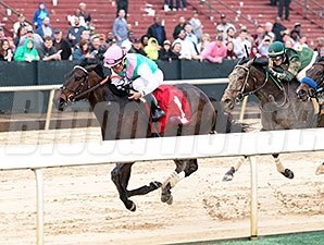 Close Hatches wins the 2014 Azeri Stakes.