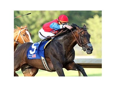 It's a Bird could be disqualified from his April 4 victory in the Oaklawn Handicap.