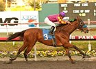 Ellafitz in the Byakoa Handicap.