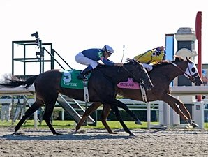 Hooh Why Stuns Stardom Bound in Ashland