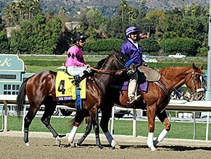 New's Year's Day in the post parade for the 2013 Breeders' Cup Juvenile.