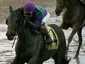 Avie's Tale wins the 2011 Blushing K. D.