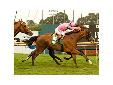 "Fantastic Pick (outside) outnods Blue Panis in the Oak Tree Derby.<br><a target=""blank"" href=""http://www.bloodhorse.com/horse-racing/photo-store?ref=http%3A%2F%2Fpictopia.com%2Fperl%2Fgal%3Fprovider_id%3D368%26ptp_photo_id%3D9235295%26ref%3Dstory"">Order This Photo</a>"