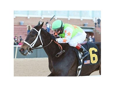 Amie's Dini won the Martha Washington Stakes in February at Oaklawn.