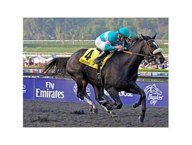 "Zenyatta won the 2009 Breeders' Cup Classic.<br><a target=""blank"" href=""http://www.bloodhorse.com/horse-racing/photo-store?ref=http%3A%2F%2Fpictopia.com%2Fperl%2Fgal%3Fprovider_id%3D368%26ptp_photo_id%3D8609313%26ref%3Dstory"">Order This Photo</a>"
