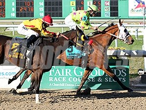 Too Dim wins the 2014 Louisiana Champions Day Sprint Stakes.