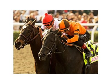 "Quisisana (right) outfinishes Dubai Majesty to win the Sunshine Millions Filly & Mare Sprint.<br><a target=""blank"" href=""http://www.bloodhorse.com/horse-racing/photo-store?ref=http%3A%2F%2Fpictopia.com%2Fperl%2Fgal%3Fprovider_id%3D368%26ptp_photo_id%3D8769426%26ref%3Dstory"">Order This Photo</a>"