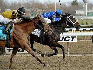 Wedding Toast Hangs On to Win Comely
