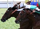 "Smart Bid (center, white cap) gets his nose in front for victory in the Mervin H. Muniz Memorial Handicap. <br><a target=""blank"" href=""http://www.bloodhorse.com/horse-racing/photo-store?ref=http%3A%2F%2Fpictopia.com%2Fperl%2Fgal%3Fprovider_id%3D368%26ptp_photo_id%3D9465142%26ref%3Dstory"">Order This Photo</a>"