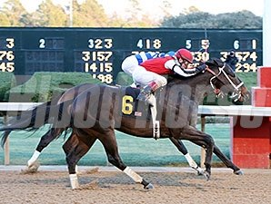 Ride On Curlin wins an allowance race at Oaklawn Park on 1/15/2015.