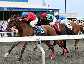 Mystic City wins the 2012 Windward Stakes.