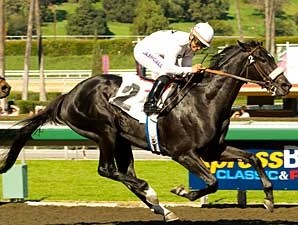 Mr. Hot Stuff broke his maiden at Santa Anita on Feb. 1, 2009