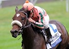 "Somali Lemonade and Alex Solis capture the JPMorgan Chase Jessamine Stakes at Keeneland.<br><a target=""blank"" href=""http://www.bloodhorse.com/horse-racing/photo-store?ref=http%3A%2F%2Fpictopia.com%2Fperl%2Fgal%3Fprovider_id%3D368%26ptp_photo_id%3D9706677%26ref%3Dstory"">Order This Photo</a>"