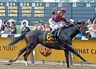 Da' Tara's Belmont victory was the top story of 2008.