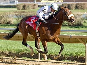 American Lion Wire-to-Wire in Illinois Derby