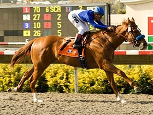 Bench Points wins the 2010 Graduation Stakes.