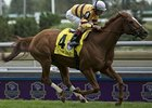 Wise Dan wins the Woodbine Mile.
