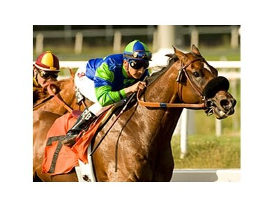 "Rail Trip winning the Californian Stakes June 12.<br><a target=""blank"" href=""http://www.bloodhorse.com/horse-racing/photo-store?ref=http%3A%2F%2Fpictopia.com%2Fperl%2Fgal%3Fprovider_id%3D368%26ptp_photo_id%3D9065821%26ref%3Dstory"">Order This Photo</a>"