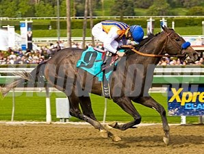 The Factor Maiden win 12/26/10