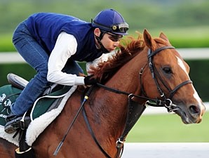 Casino Drive training prior to the June 7 Belmont Stakes (gr. I)