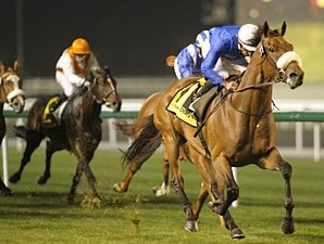 'Riley' Springs Upset in Zabeel Mile