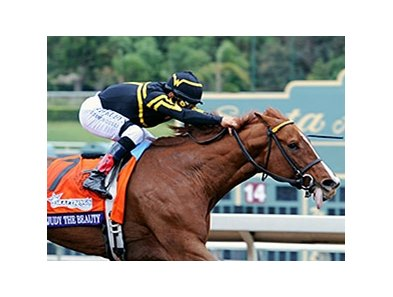 "Judy the Beauty<br><a target=""blank"" href=""http://photos.bloodhorse.com/BreedersCup/2014-Breeders-Cup/Filly-Mare-Sprint/i-dkNskCc"">Order This Photo</a>"