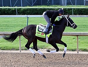 Vinceremos - Churchill Downs, May 1, 2014