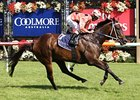 Black Caviar takes control late to win the Lightning Stakes, her 19th win without a defeat.