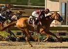 "Evita Argentina takes on the boys in the San Vicente.<br><a target=""blank"" href=""http://www.bloodhorse.com/horse-racing/photo-store?ref=http%3A%2F%2Fpictopia.com%2Fperl%2Fgal%3Fprovider_id%3D368%26ptp_photo_id%3D5428834%26ref%3Dstory"">Order This Photo</a>"